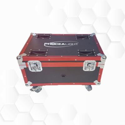 Flight case PAR Batterie 9x15W