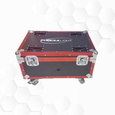 Flight case PAR Batterie 9x15W